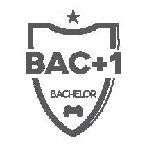 bachelor 1 esport