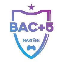 Mastere bac+5 esport